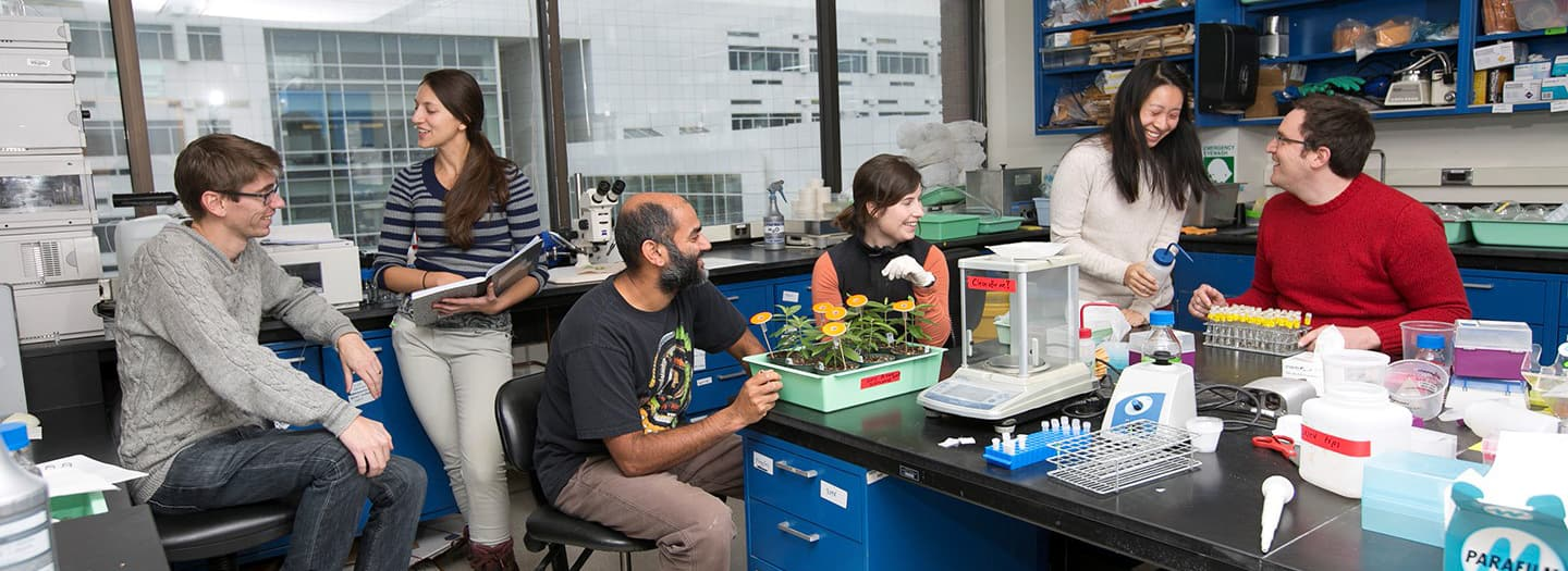 Professor Anurag Agrawal in his lab with students