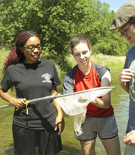 Three EEB students in the field collecting fish small fish with a dip net