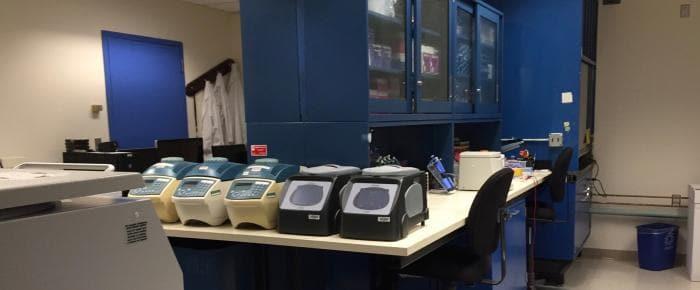 Evolutionary Genetics Core Facility