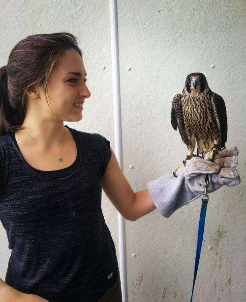 Undergraduate student, Raisa Kochmaruk shown with a falcon