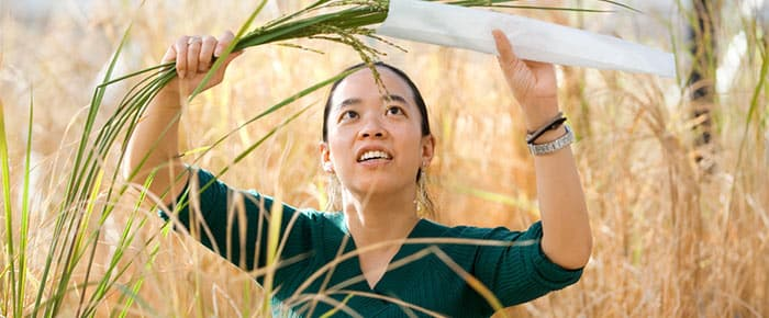 Woman reaching for plant